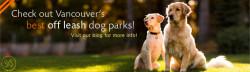 Visit our Blog for Vancouver's best off leash dog parks!